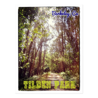 Tilden Park hiking path postcard