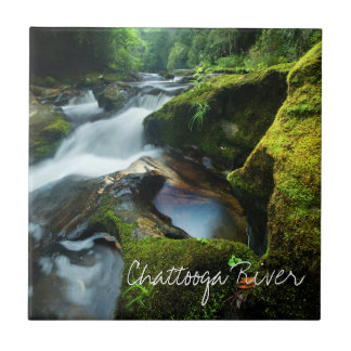 Tile of beautiful Chattooga River