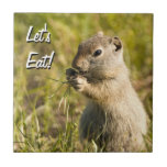 Tile with cute ground squirrel eating, custom text
