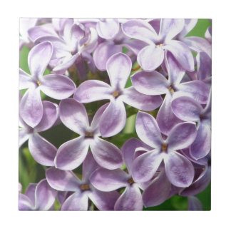 tile with photo of beautiful purple lilacs