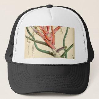 Tillandsia bulbosa trucker hat