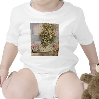 Tillandsia Camisetas