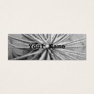 Tillandsia tectorum mini business card