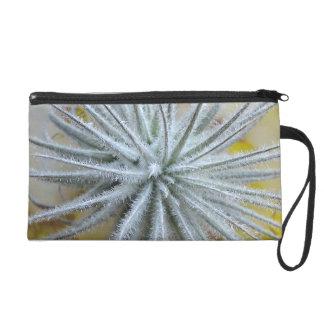 Tillandsia tectorum wristlet purse