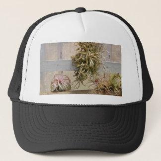Tillandsia Trucker Hat