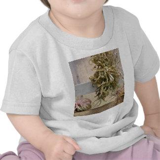 Tillandsia Tshirts