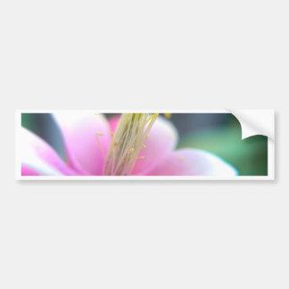 Tilted Pink Flower Bumper Sticker