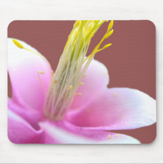 Tilted Pink Flower (isolated) Mouse Pad