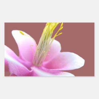 Tilted Pink Flower (isolated) Rectangular Sticker