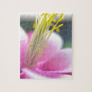 Tilted Pink Flower Jigsaw Puzzle