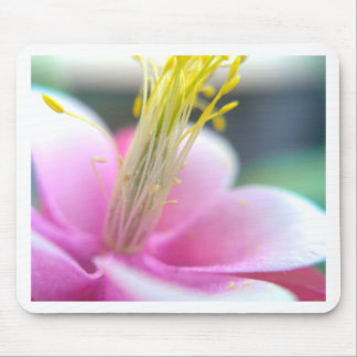 Tilted Pink Flower Mouse Pad