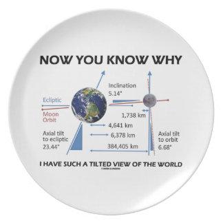 Tilted View Of The World (Orbital Variation) Dinner Plate