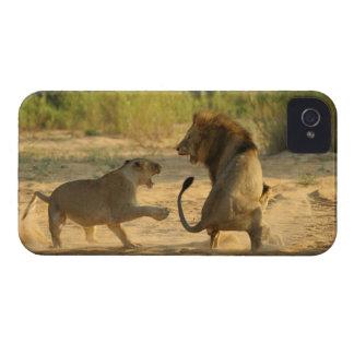 Timbavati River Kruger National Park Limpopo iPhone 4 Case-Mate Case