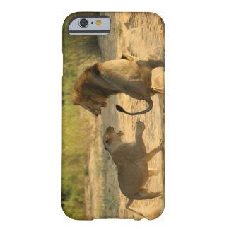 Timbavati River Kruger National Park Limpopo iPhone 6 Case