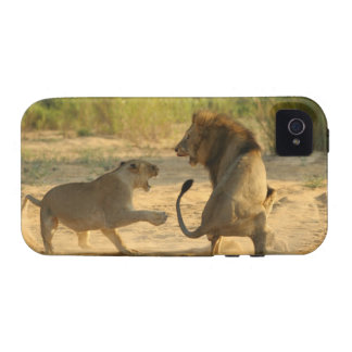 Timbavati River Kruger National Park Limpopo Vibe iPhone 4 Covers