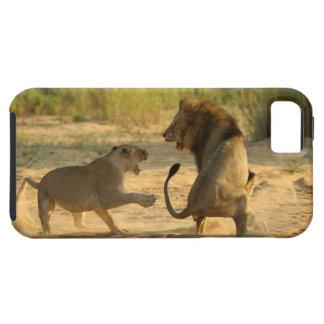 Timbavati River Kruger National Park Limpopo iPhone 5 Case