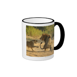 Timbavati River, Kruger National Park, Limpopo Coffee Mugs