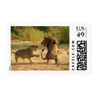 Timbavati River, Kruger National Park, Limpopo Postage