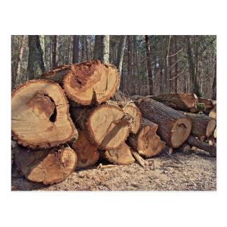 Timber Postcard