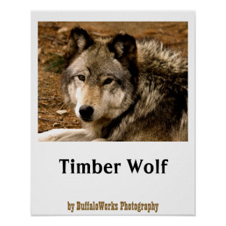 Timber Wolf 1630 Poster