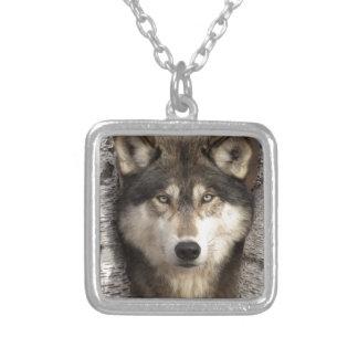Timber wolf by Jim Zuckerman Custom Jewelry