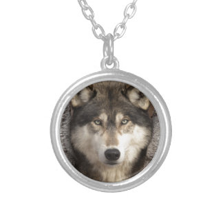 Timber wolf by Jim Zuckerman Pendants