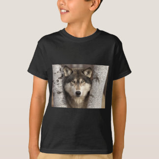 Timber wolf by Jim Zuckerman T-Shirt