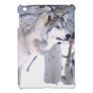 Timber Wolf, Canis lupus, Movie Animal Utah) Case For The iPad Mini