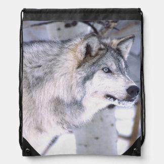 Timber Wolf, Canis lupus, Movie Animal Utah) Drawstring Backpack