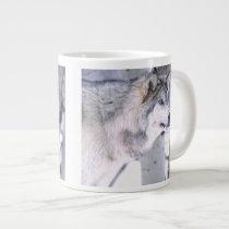 Timber Wolf, Canis lupus, Movie Animal Utah) Large Coffee Mug