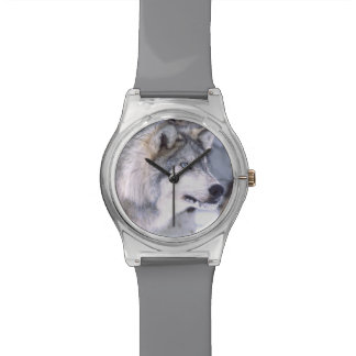 Timber Wolf, Canis lupus, Movie Animal Utah) Wrist Watch
