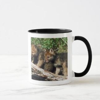 Timber wolf cubs mug