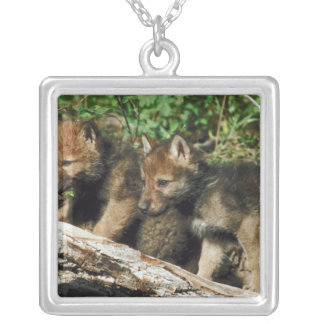 Timber wolf cubs necklace