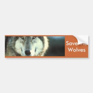 Timber Wolf from Junglewalk.com Bumper Stickers