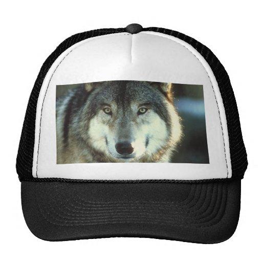 Timber-Wolf from JungleWalk.com Trucker Hat