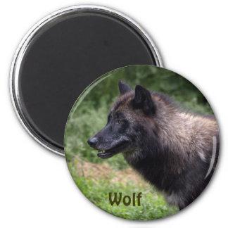 Timber Wolf Grey Wolf Wild Animal 2 Inch Round Magnet