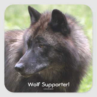 Timber Wolf Grey Wolf Wild Animal Stickers