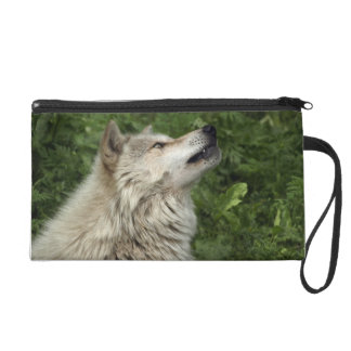 Timber Wolf Grey Wolf Wild Animal Wrist Purse Wristlet Purse