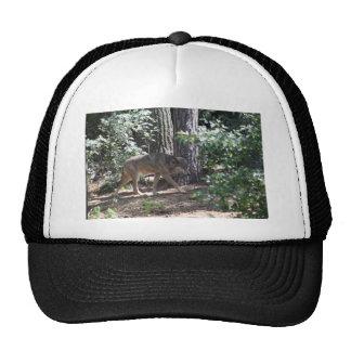Timber Wolf Trucker Hat