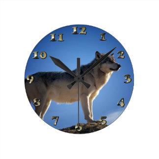 Timber Wolf in Montana - Big Sky Country Round Wallclocks