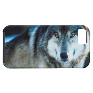 Timber Wolf iPhone SE/5/5s Case