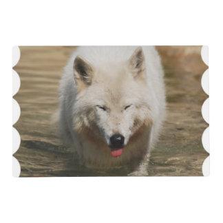 Timber Wolf Laminated Place Mat