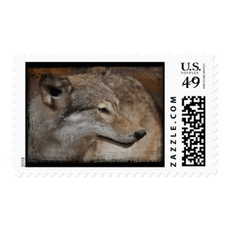 Timber Wolf Postage Stamp