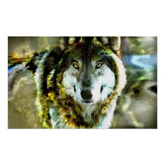 Timber-Wolf Poster from JungleWalk.com