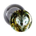 Timber Wolf Products from JungleWalk.com Pinback Button