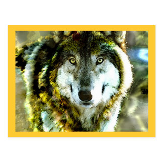 Timber Wolf Products from JungleWalk.com Postcard