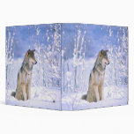 Timber Wolf sitting in the Snow, Canis lupus, Vinyl Binders
