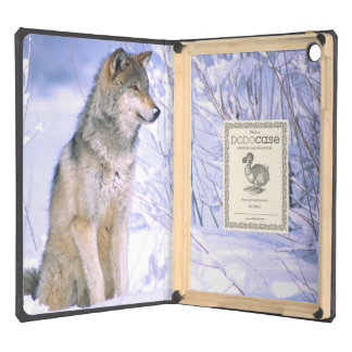 Timber Wolf sitting in the Snow, Canis lupus, iPad Air Case