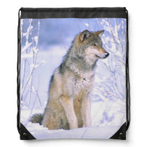 Timber Wolf sitting in the Snow, Canis lupus, Drawstring Backpack