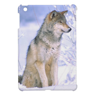 Timber Wolf sitting in the Snow, Canis lupus, iPad Mini Covers